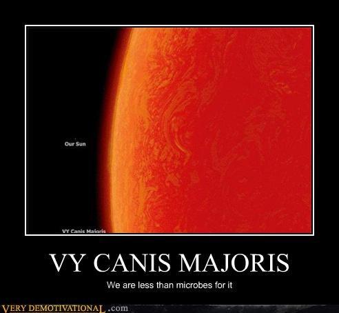 canic majoris
